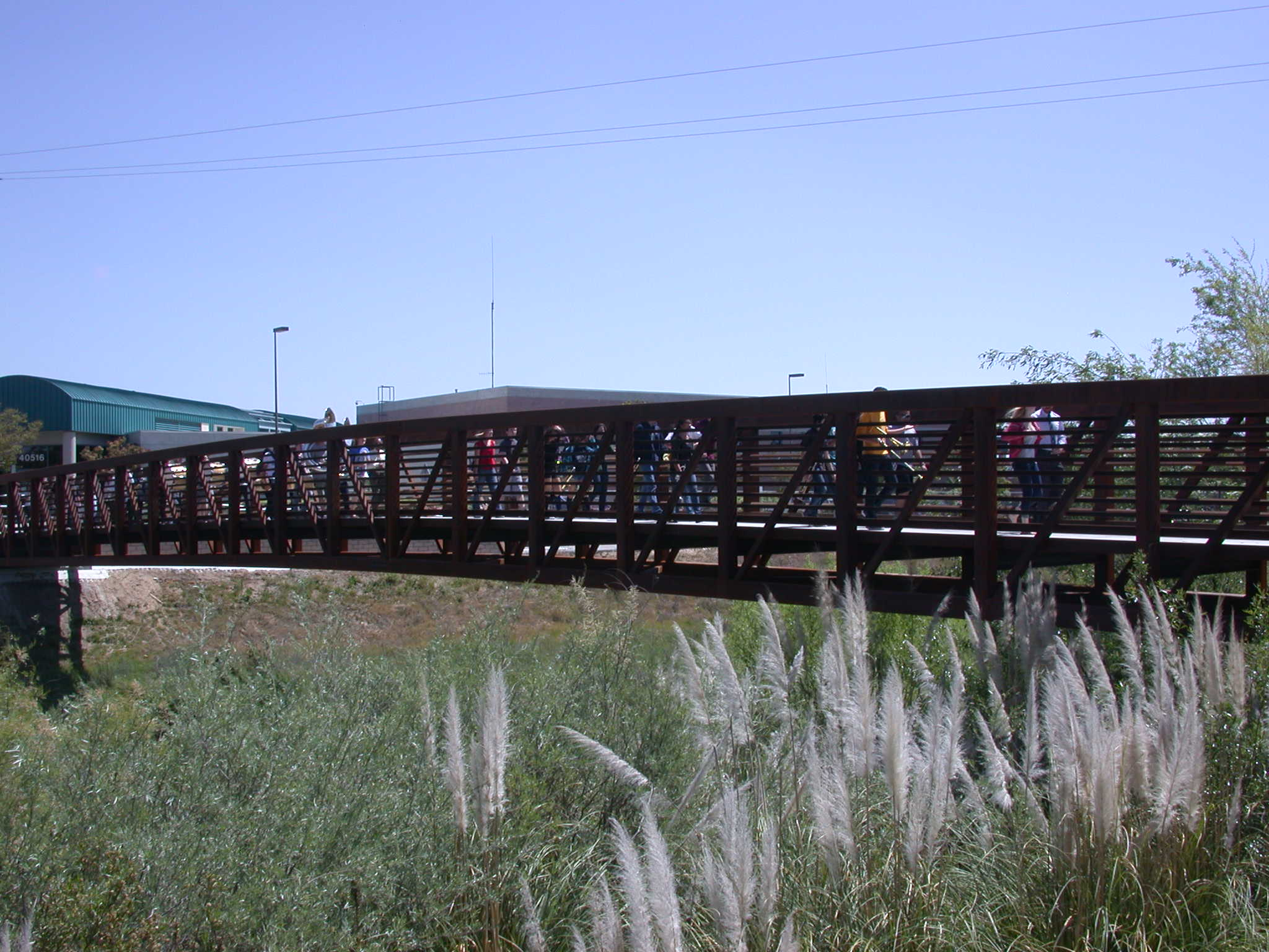 Santa Gertrudis Creek Bridge