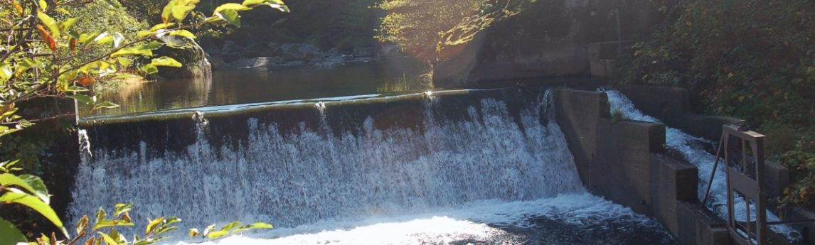 NV5 - Wildcat Dam Removal